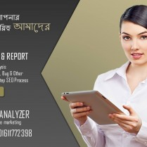 Best Web Structure Analysis & Audit Report Service in Dhaka